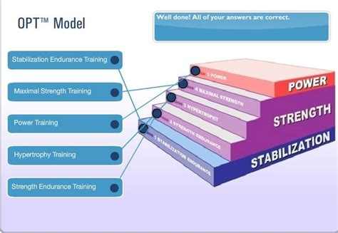 opt model template nasm opt model i work out