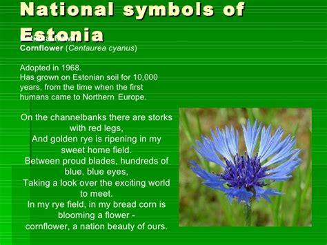 Esmonia Lopperio Flower estonian nature