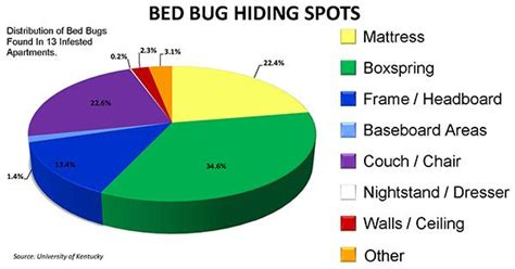 what temp kills bed bugs does heat kill bed bugs what temperature kills bed bugs
