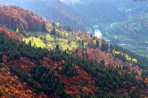 colors of autumn all colors of autumn in the ukrainian carpathians