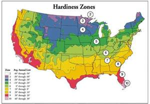 gardening zones what is plant hardiness digger odell nursery