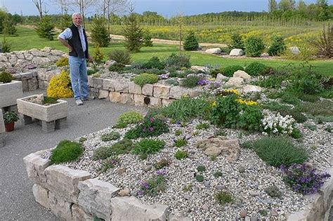 rock gardening country gardener rock gardening anyone