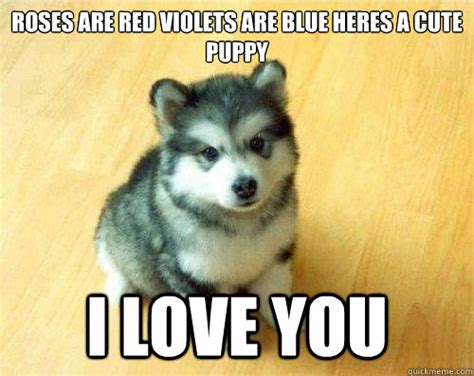 Cute Love Meme - cute puppy love memes image memes at relatably com