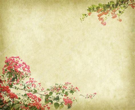 imagenes bellas vintage fondo de fondos vintage con flores de buganvilla fotos