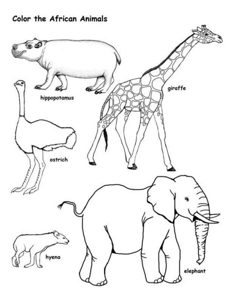 free coloring pages of wild animals wild animals coloring pages coloring page art
