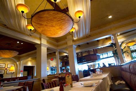 brio restaurant gulfstream park review of brio tuscan grille 33009 restaurant 600 silks run su