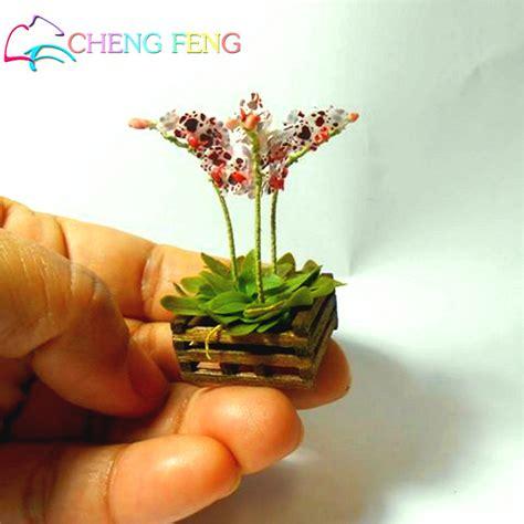 mini plants kaufen gro 223 handel mini orchidee aus china mini