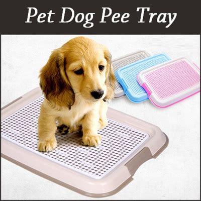 dog pee on down comforter qoo10 pet dog toilet pee tray dog puppy potty toilet