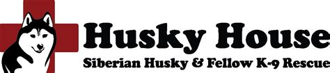 husky house pets for adoption at husky house in matawan nj petfinder