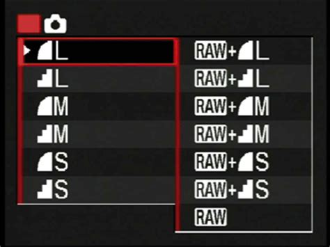 how to set raw + jpeg canon professional network