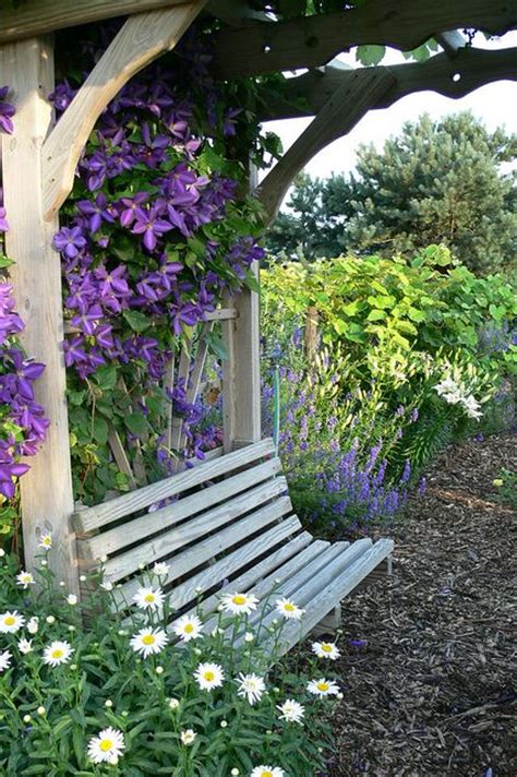 bench with arbor my colorful roses lovely arbor and bench with clematis
