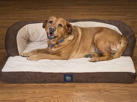 serta perfect sleeper oversized orthopedic sleeper sofa pet bed serta perfect sleeper oversized orthopedic luxury sofa pet