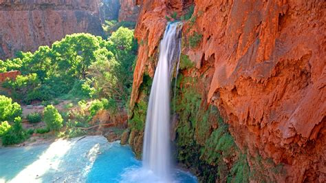 Blumen Und Pflanzen 2406 by Wasserfall Fluss Pflanzen Felsen Natur Landschaft