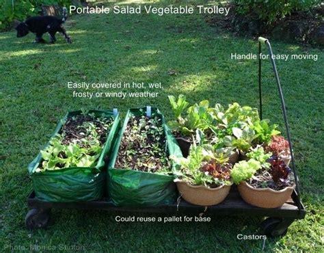 17 Best Images About Garden On Pinterest Gardens Raised Mobile Vegetable Garden
