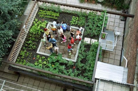 Turin Grows Rooftop Vegetable Gardens With Ortoalto Le Rooftop Vegetable Garden