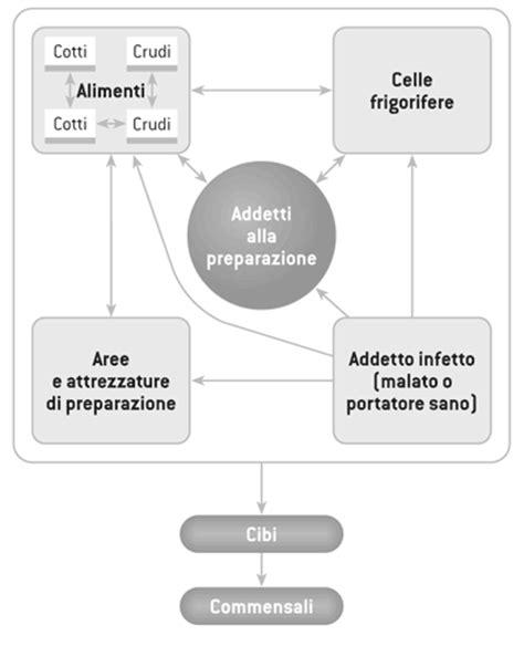 contaminazione crociata alimenti a3 2 4 igiene nella manipolazione degli alimenti salabar it