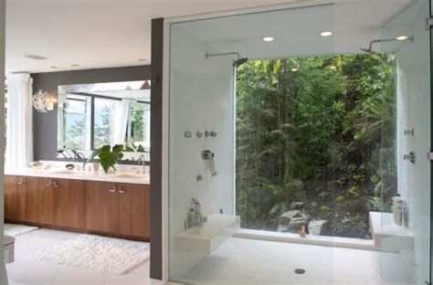 window   shower pros  cons   ideas digsdigs