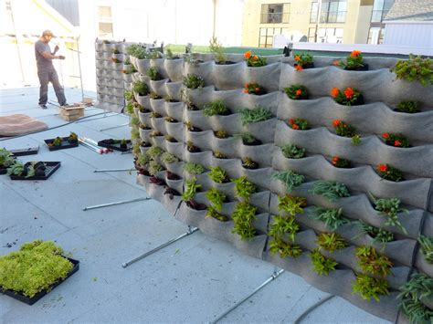 wall garden systems plants on walls vertical garden systems march 2012