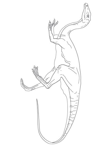 baryonyx coloring page coloring home