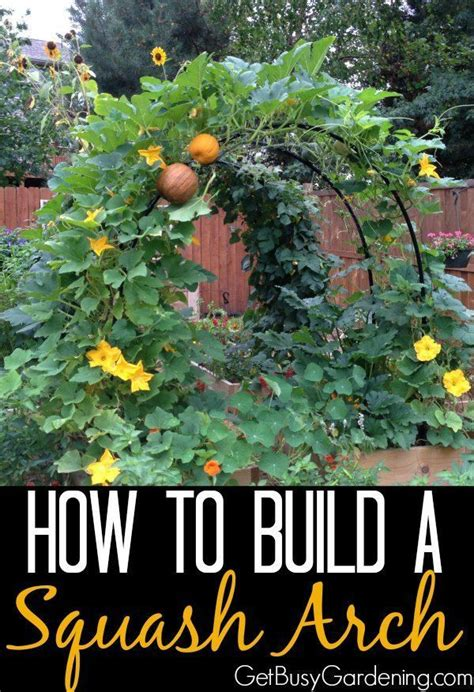 Garden Arch How To Make 1000 Ideas About Garden Arches On Garden