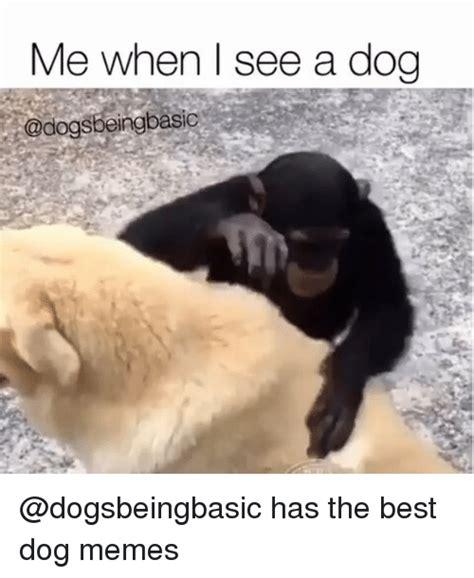 Best Dog Memes - 25 best memes about best dog best dog memes