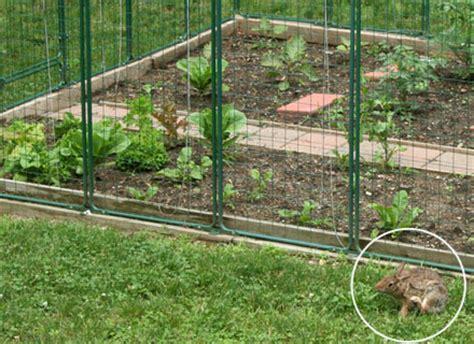 superb garden protection  deer fence vegetable garden