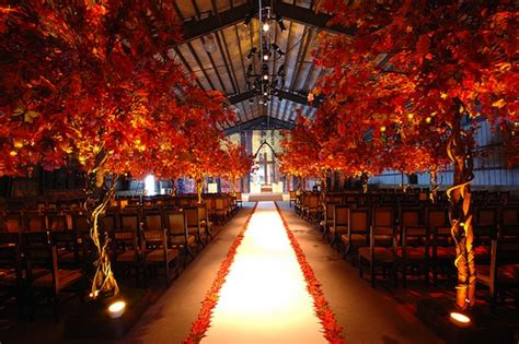 Wedding Aisle Trees by Stunning Wedding Aisle And Inspiration Sharp N Chic Weddings