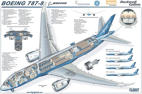 cross section plane boeing 787 cross section