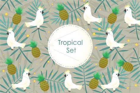 file al tropical cuties tropical cuties dely set newhairstylesformen2014 com
