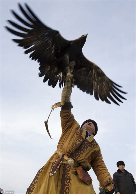 going for squawkies the hunters who use golden eagles to