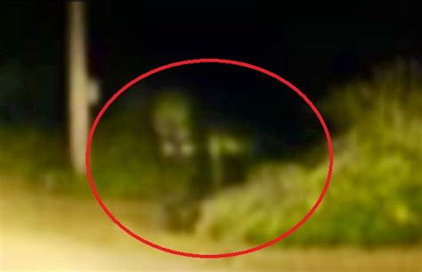 Grey House by Top 10 Dover Demon Sightings With Pictures Proved It Is