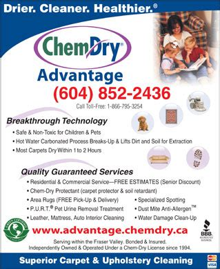 non water based upholstery cleaner chem dry advantage