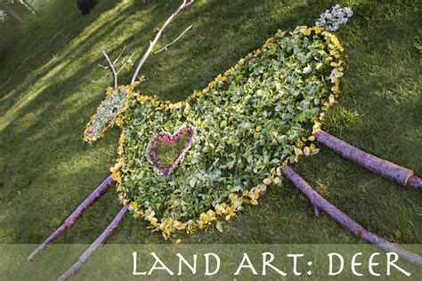 Land Art: Deer ? Outside with Marghanita
