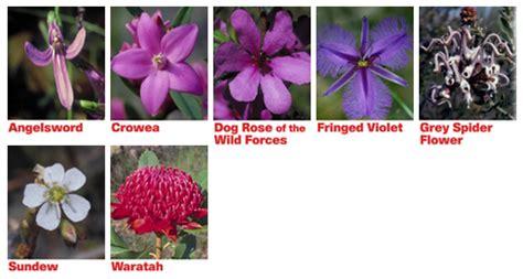 fiori australiani emergency emergency essence fiori australiani essenza combinata