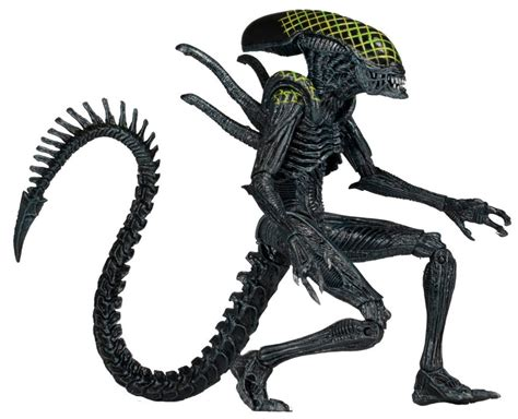 figure features neca s aliens series 7 to feature a translucent big chap