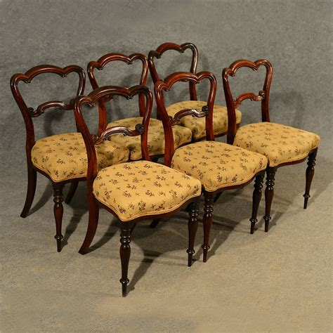 antique walnut dining room chairs antique dining chairs walnut set of 6 quality