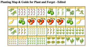 Raised Garden Bed Vegetables - starting a garden foster house