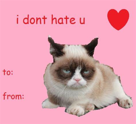 grumpy cat valentines 17 best images about valentines on