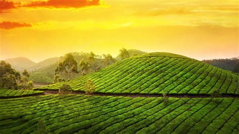 4k wallpaper kerala kerala wallpapers for desktop wallpapersafari