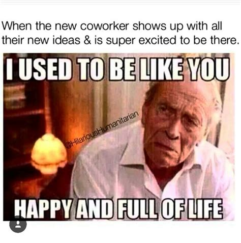 Funny I Like You Memes - lol thank heavens i like my job but this meme is