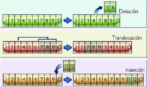 imprimir cadenas en php imprimir las mutaciones y la evoluci 211 n