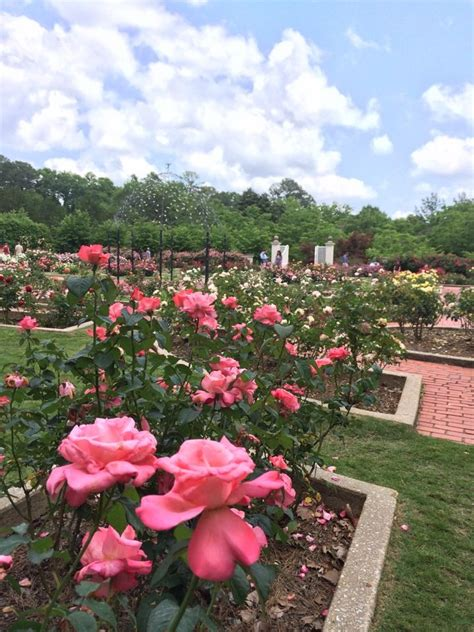 Birmingham Botanical Gardens Cafe 38 Best Restaurants To Go To From Liberty Park Images On Pinterest Liberty Birmingham And