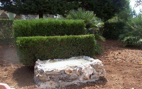 giardino koi no design 73 vasca da giardino koi pond