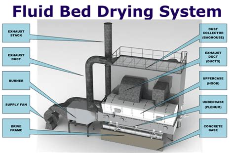 fluid bed dryer fluid bed technology fluidized bed dryer fluidized bed drier
