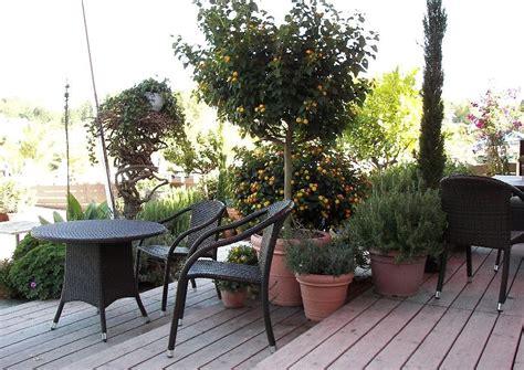 terrasse oder terrasse terrasse aus holz oder stein bauen die vorteile und