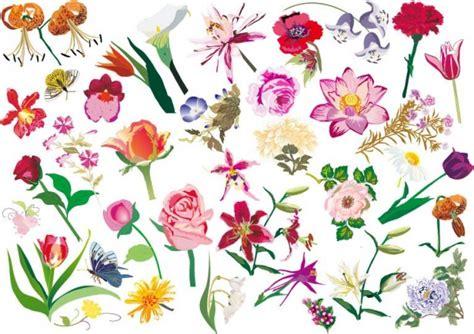 fiori varietà fiori variet 224 set sfondo vettoriale scaricare vettori gratis