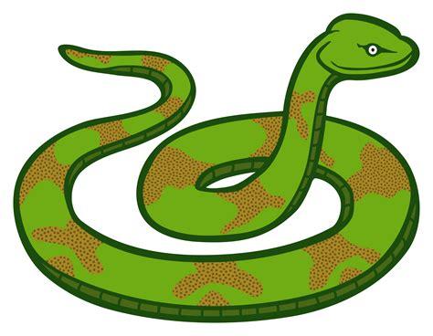 clipart snake clipart snake coloured