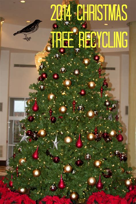 philadelphia christmas tree recycling 2013 2014