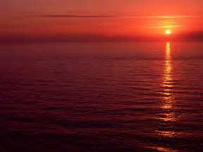 Fotos del mar rojo
