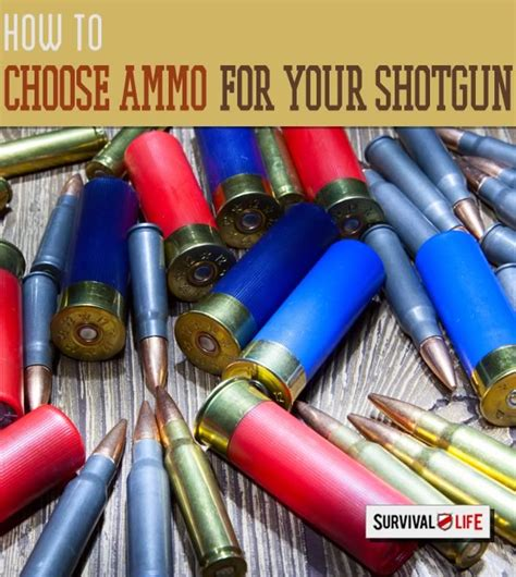 best ammo for shotgun survival